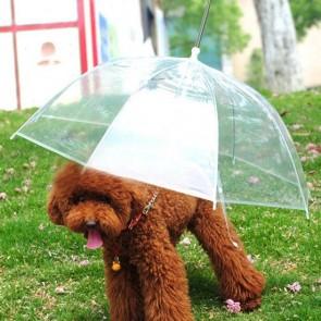 Ombrello per Cani rain